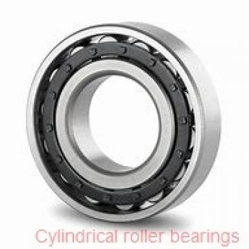 NNU49/500MAW33 CYLINDRICAL ROLLER BEARINGS TWO-Row